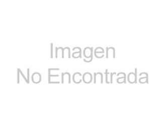 Centro comercial cobija a perros callejeros