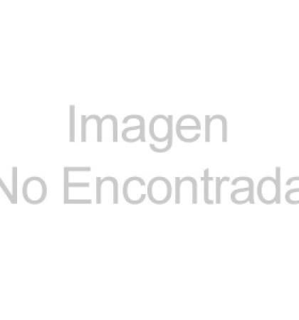 Feria Internacional del Tamal
